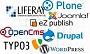 Estudio de los sistemas de gestión de contenidos web – Análisis de las mejoras soluciones del mercado – Centro de Apoyo Tecnológico a Ciudadanos y Empresas [PDF]