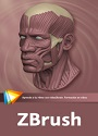 Video2Brain: ZBrush – Escultura digital – José Vicente Carratalá [Videotutorial]