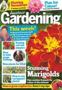 Amateur Gardening – January 6, 2018 [PDF]