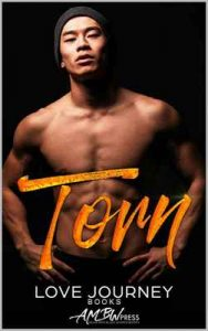 Torn – Love Journey, AMBW Press [ePub & Kindle] [English]