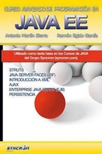 Curso Avanzado de Programación en Java EE: Struts, JSF, Ajax, EJB, JPA – Ramón Egido García, Antonio Martín Sierra [ePub, Kindle & PDF]