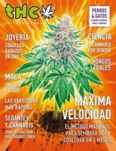 Revista THC – Junio, 2019 [PDF]