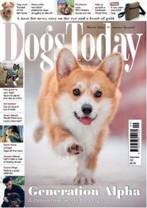 Dogs Today UK – September, 2021 [PDF]